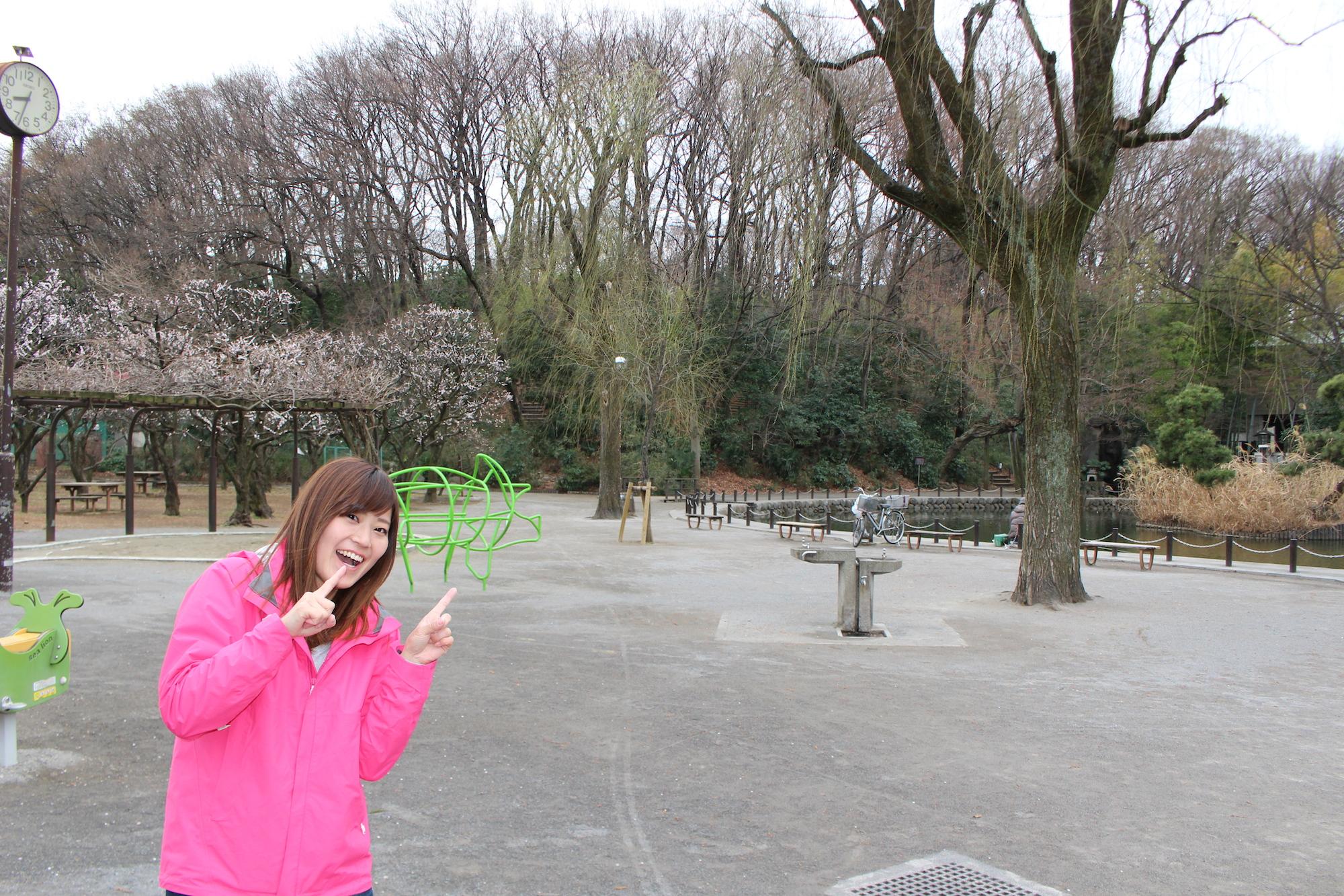 地元民が教える「赤塚城」の見どころ