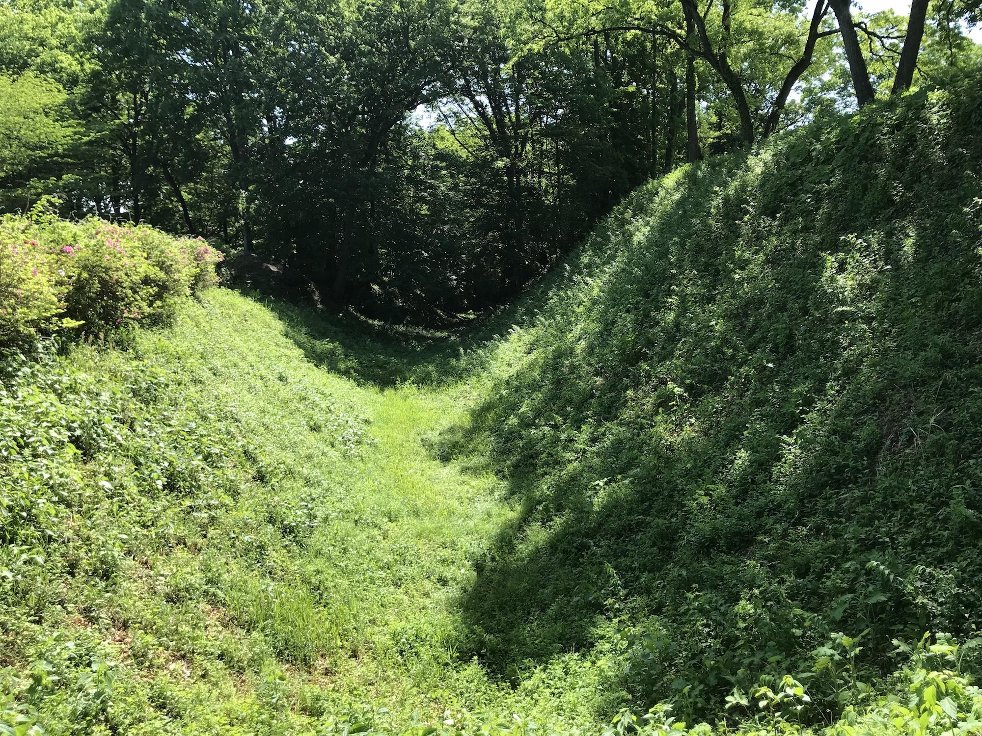 続日本100名城の「菅谷館」